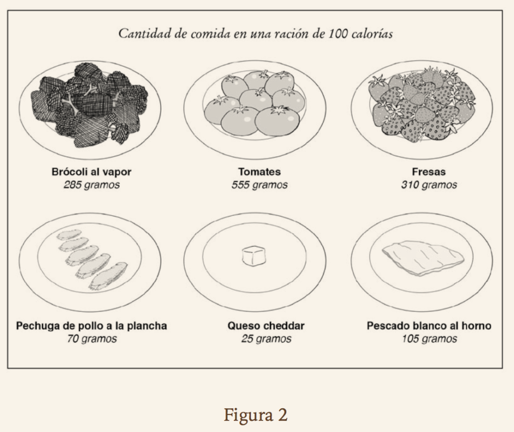 plan de dieta de comida india para la diabetes